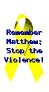 Remember Matthew. Stop The Hate.